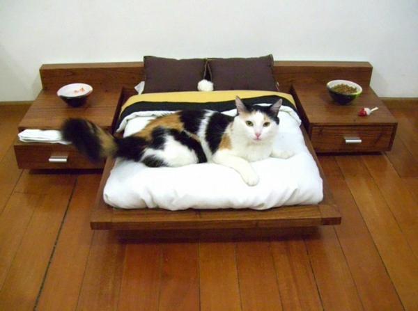 katzenmöbel schlafzimmer design lustig bett