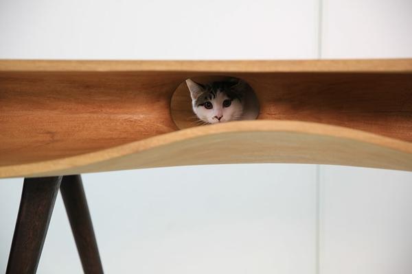 katzenmöbel wellen formen versteck tisch