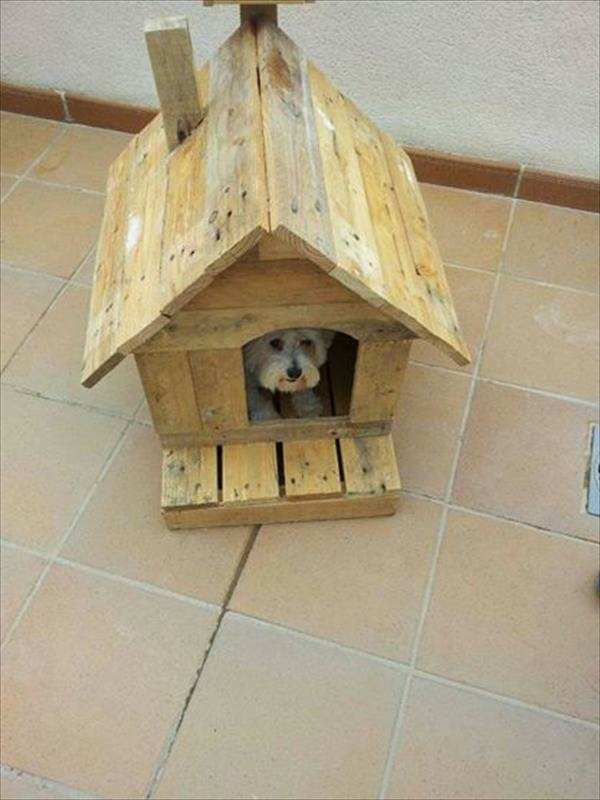 klein Holzmöbel aus Paletten hundehaus