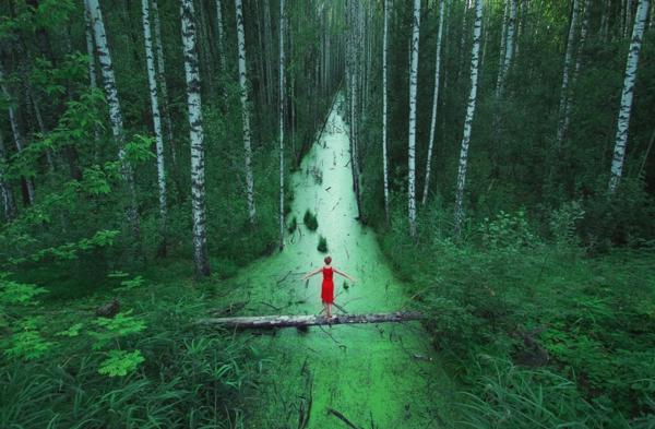 mensch im wald landschft belarus bilder