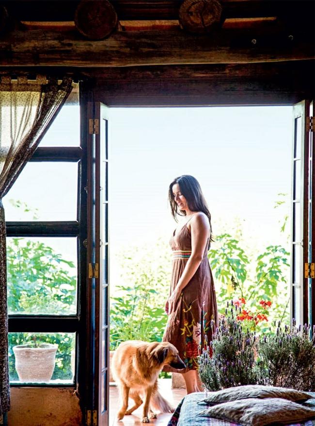 nachhaltige architektur rustikale wohnideen terrassengestaltung ideen haustier hund