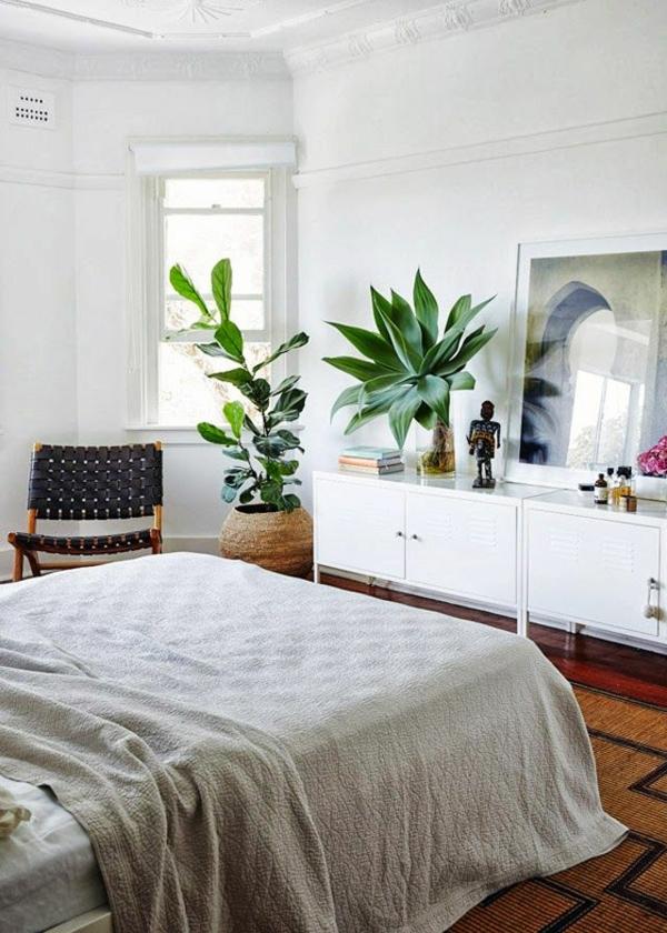 Pflanzen im Schlafzimmer - Topfblumen, die sich besonders ...
