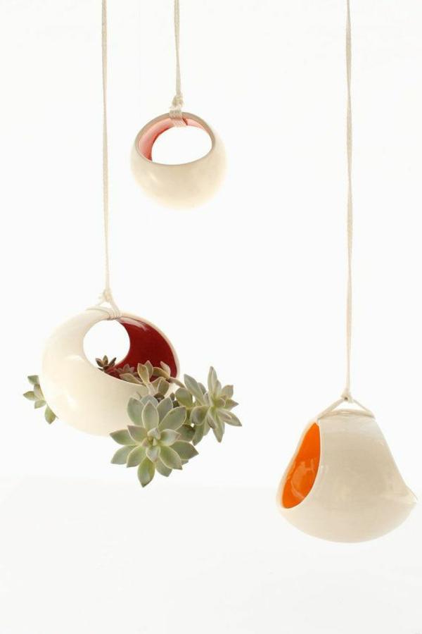robuste zimmerpflanzen hängend topfpflanzen sukkulenten designer ideen