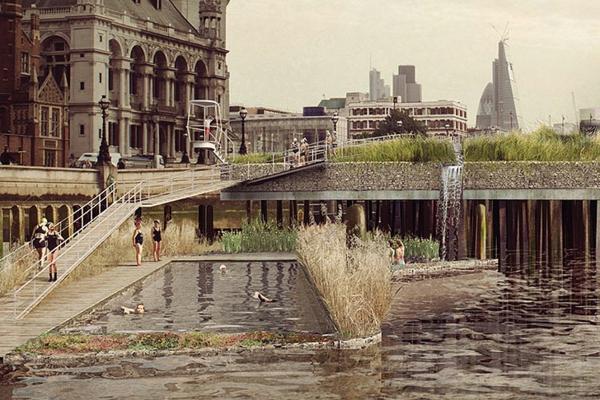 schwimmbadplanung projekt naturbad thames pool studio octopi architekten