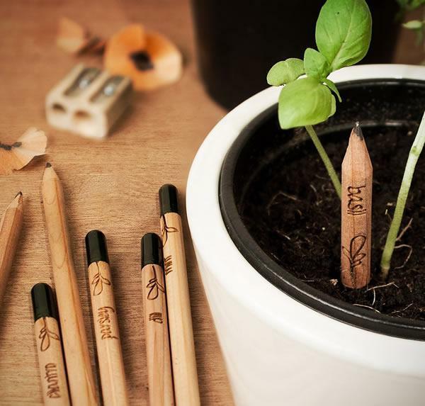 Stifte Aus Denen Man Zu Hause Einen Garten Machen Kann