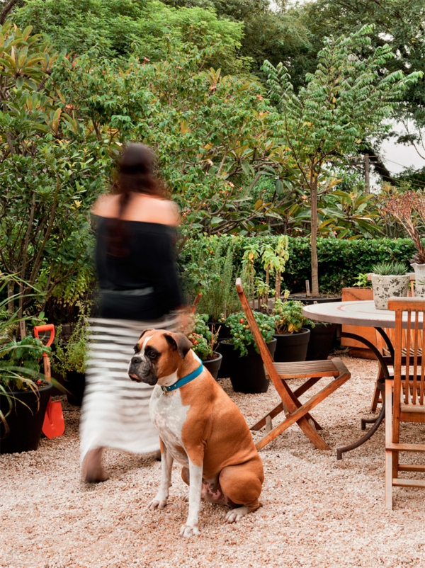 terrassengestaltung ideen balkonpflanzen gewürzen sand kieselsteine hund haustiere