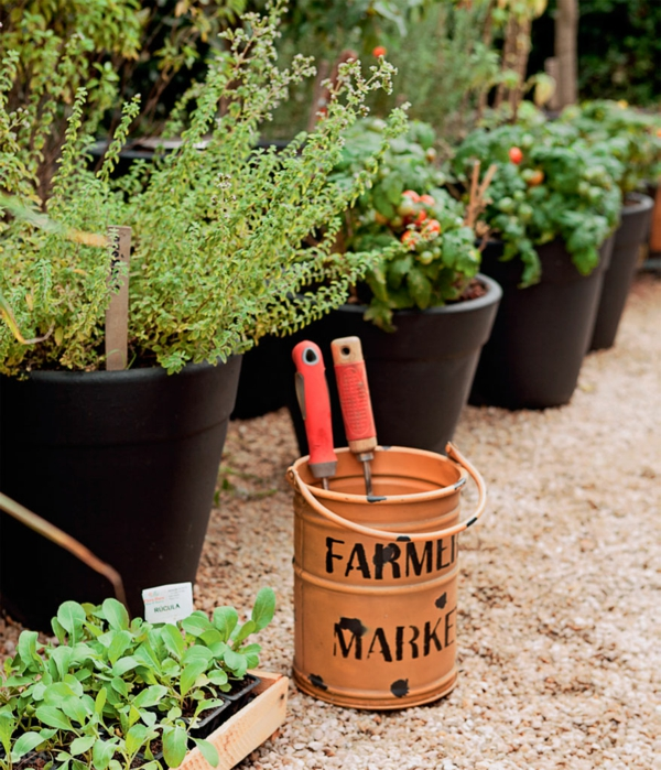 terrassengestaltung ideen balkonpflanzen gewürzen topfpflanzen