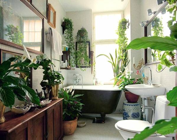 tropisches badezimmer einrichten grüne zimmerpflanzen