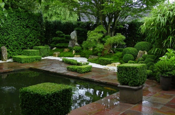 zen garten anlegen japanisch immergrüne pflanzen