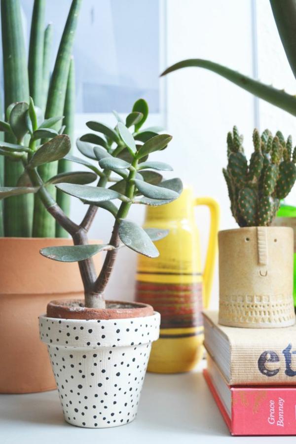 Zimmergr npflanzen bilder und inspirierende deko ideen for Deko topfpflanzen