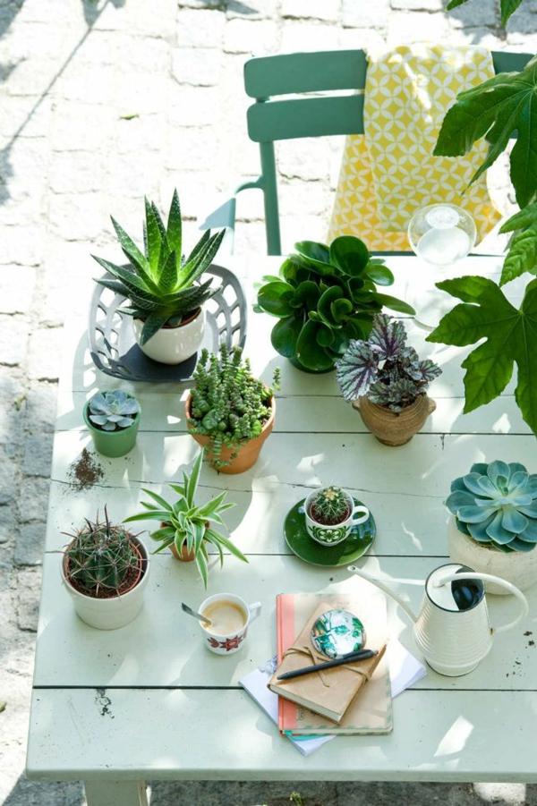 Design#5001207: . Terrasse Gestalten Frische Topfpflanzen