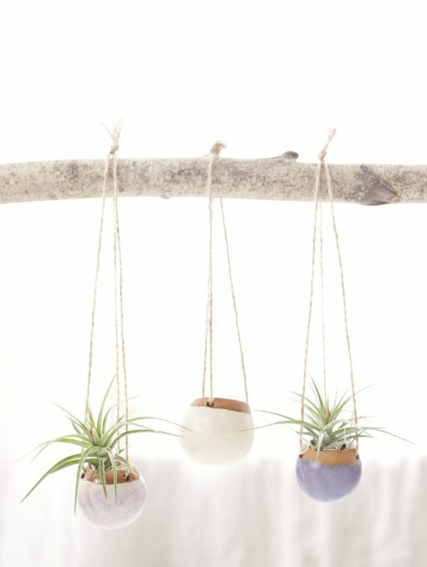 zimmerpflanzen grüne einrichtungsideen pflanzampel diy bastelideen