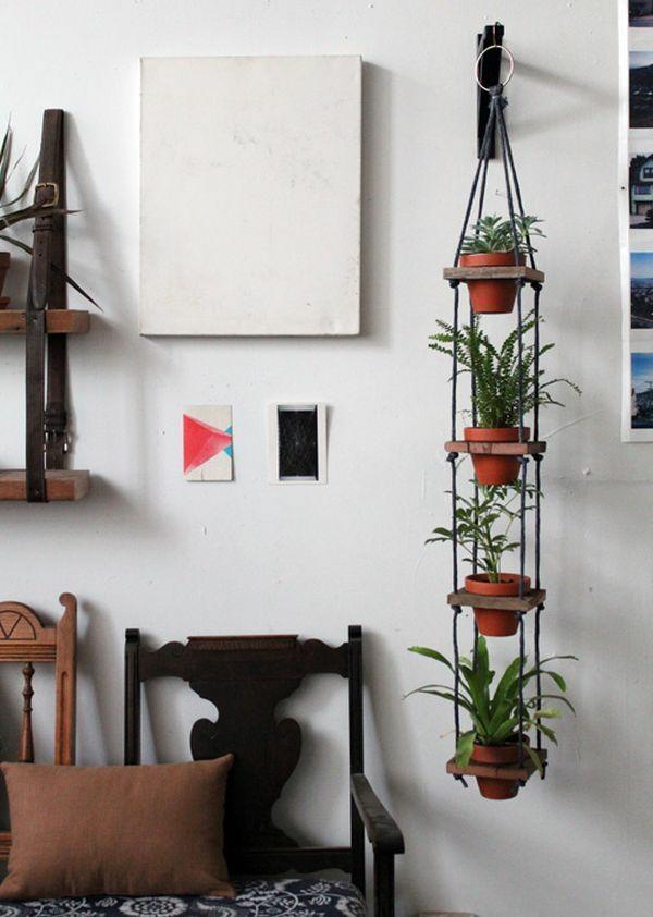 zimmerpflanzen grüne einrichtungsideen wandgestaltung ideen