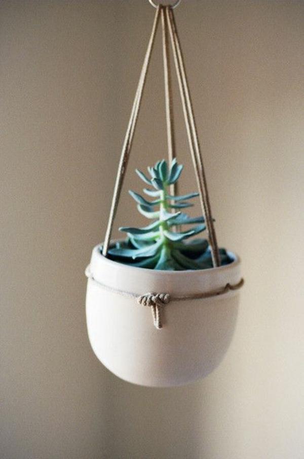 zimmerpflanzen hängend deko ideen blumenampel topfpflanzen sukkulenten