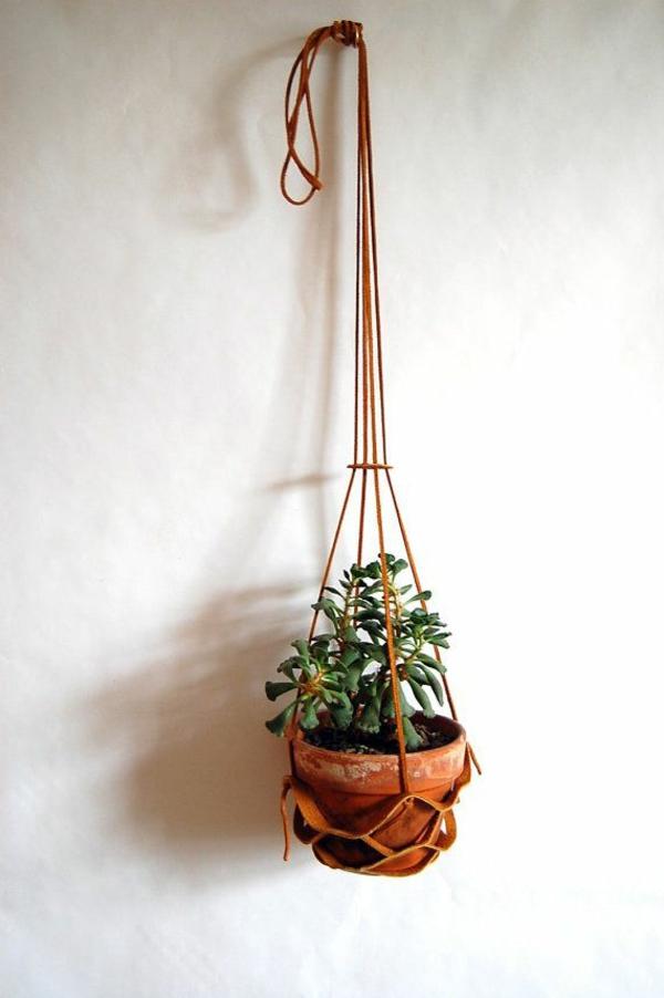zimmerpflanzen hängend topfpflanzen wabddeko ideen