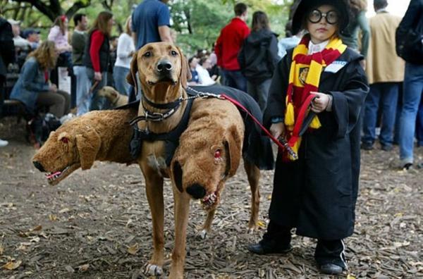Halloween Kinderkostüme designs festlich dreiköpfig hund
