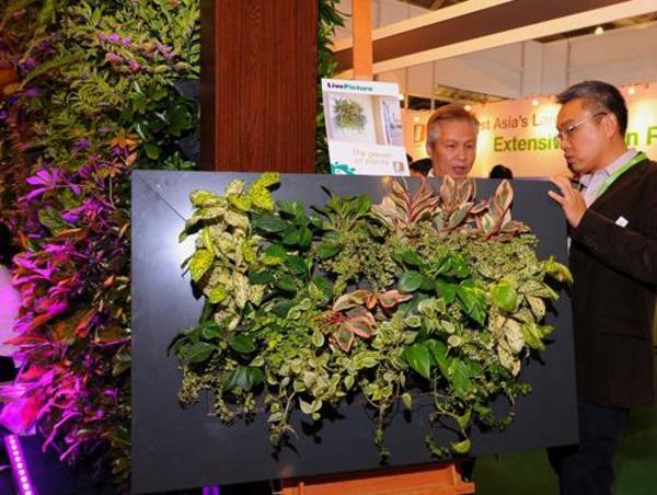 Wanddeko designer ausstellung Pflanzen ausstellung designer