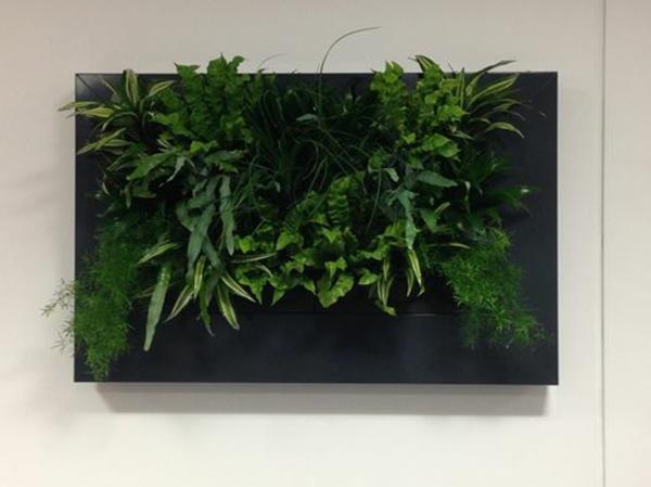 Wanddeko mit pflanzen livepicture erfrischt das ambiente for Wanddeko aussenbereich