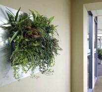 Wanddeko mit Pflanzen – LivePicture erfrischt die Luft und das Ambiente