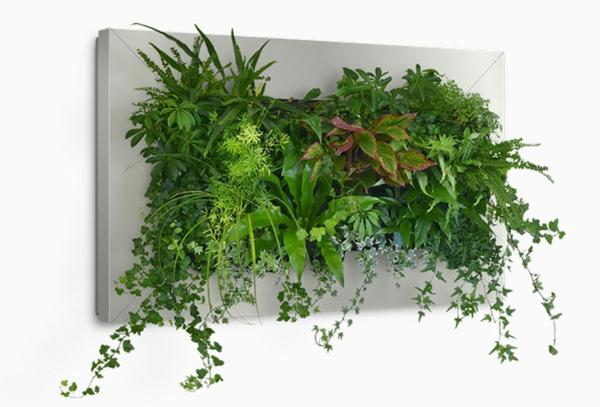 Wanddeko mit pflanzen livepicture erfrischt das ambiente for Pflanzen deko wand