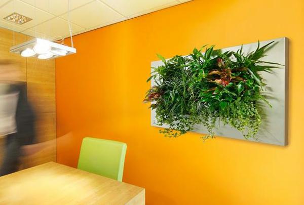 orange wandfarben Wanddeko mit Pflanzen