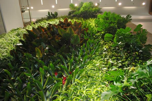 Wanddeko grün denken Pflanzen sukkulenten ideen