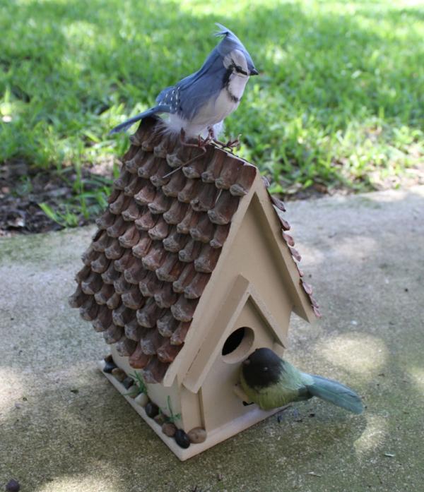 bauen sie selber ein vogelhaus