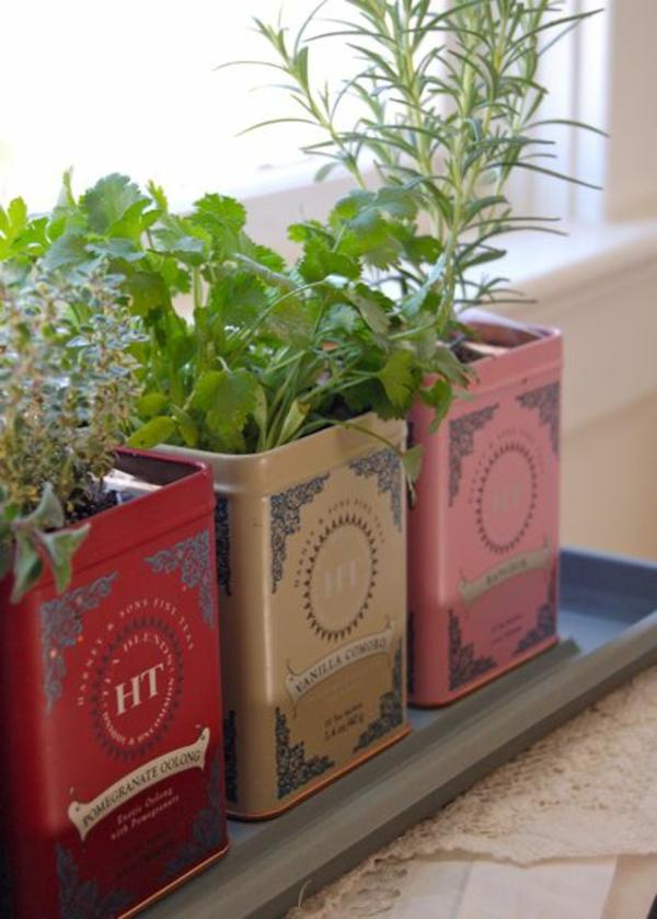kr uterpflanzen immer friche kr uter handgreifbar zu. Black Bedroom Furniture Sets. Home Design Ideas