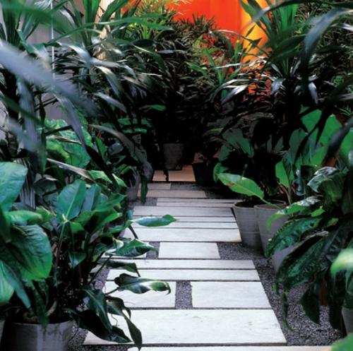 gartengestaltung ideen gartenweg gestalten topfpflanzen betonpflaster