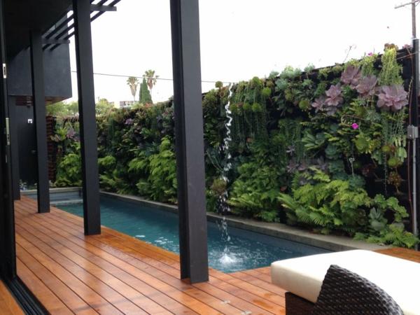 grüne pflanzen neben dem schwimmbad