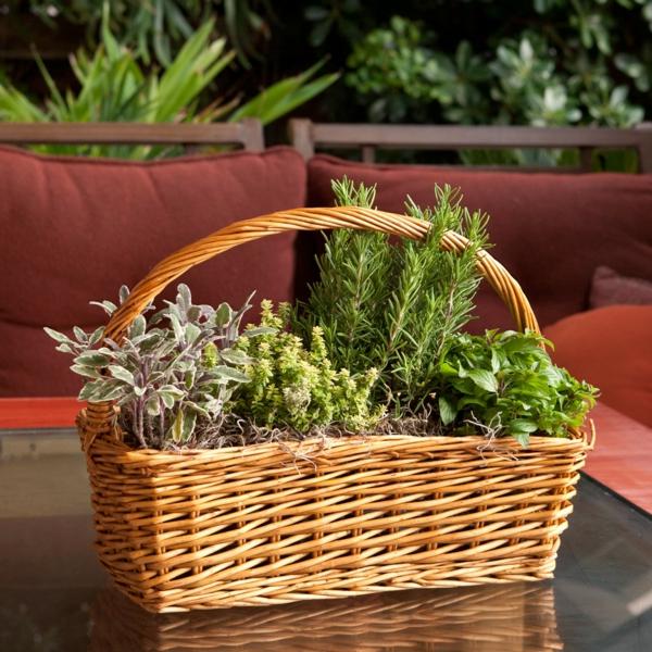 in flechtkorb kräuter für am tisch pflanzen