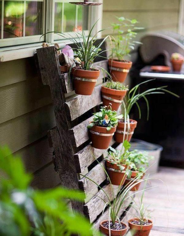 kräutrepflanzen auf holzpalette