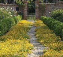 Kreative Gartenideen – ein inspirierender Garten in voller Pracht