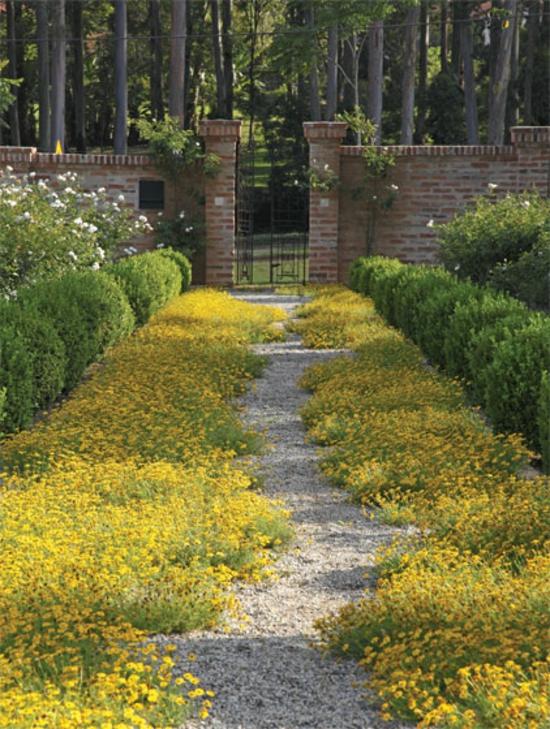 kreative gartenideen garten und landschaftsbau laufweg hecke vorgarten gestalten