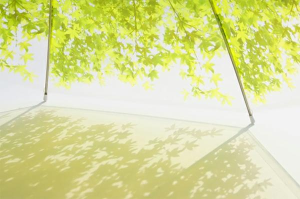 lustige regenschirme grün wiesen frisch