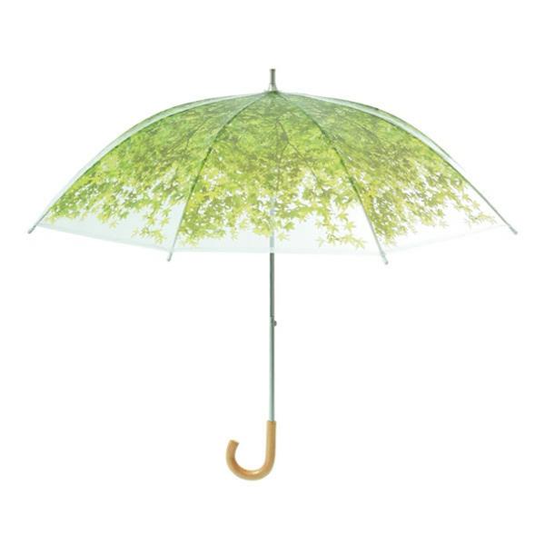 lustige regenschirme grün wiesen
