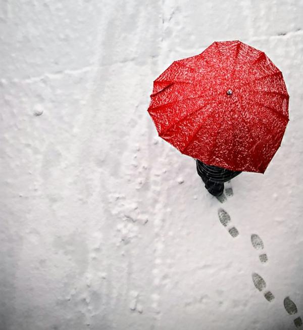 lustige rotes herz regenschirme lieb