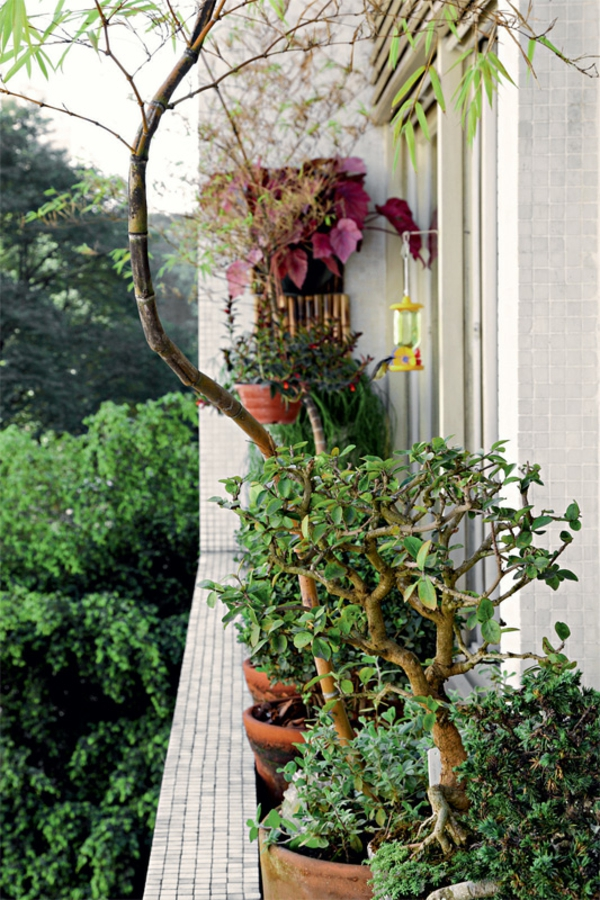 terrassengestaltung ideen topfpflanzen fensterbrett balkonpflanzen