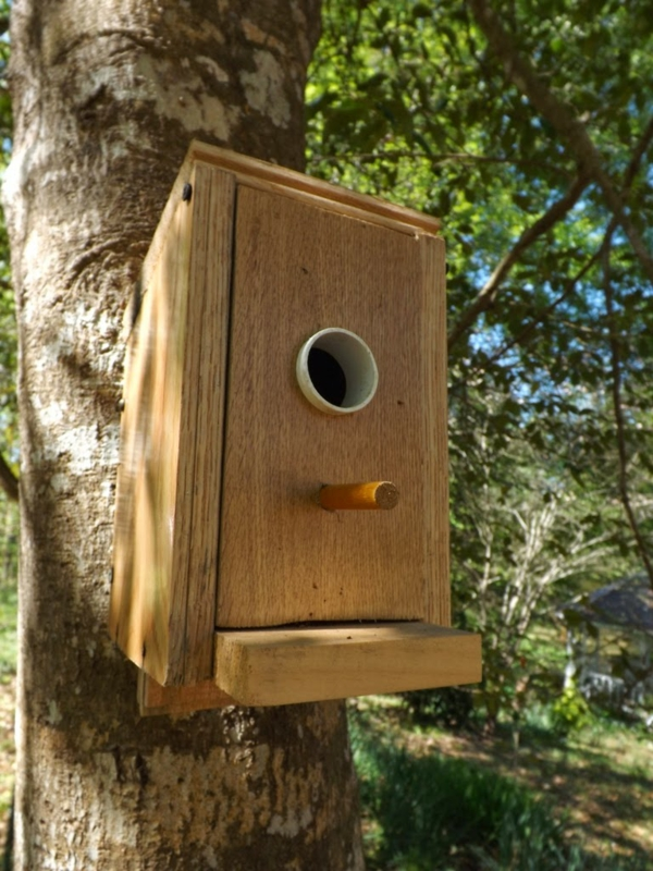 vogelhaus selber bauen leisten sie einen beitrag zum. Black Bedroom Furniture Sets. Home Design Ideas