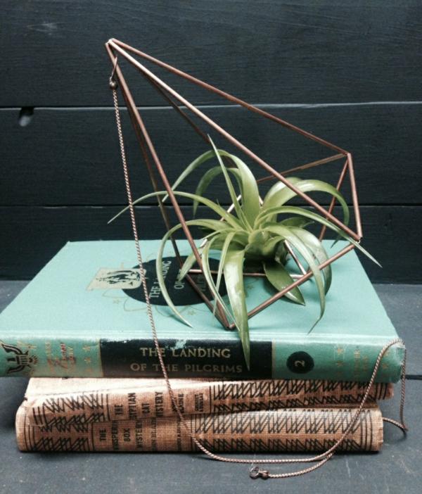 industriell Pflanzgefäße für Luftpflanzen buch geometrisch