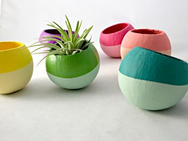 Moderne Pflanzgefäße für Luftpflanzen farben