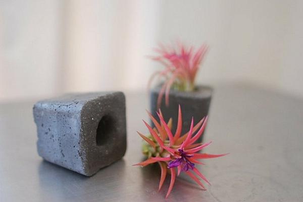 Moderne Pflanzgefäße für Luftpflanzen mini
