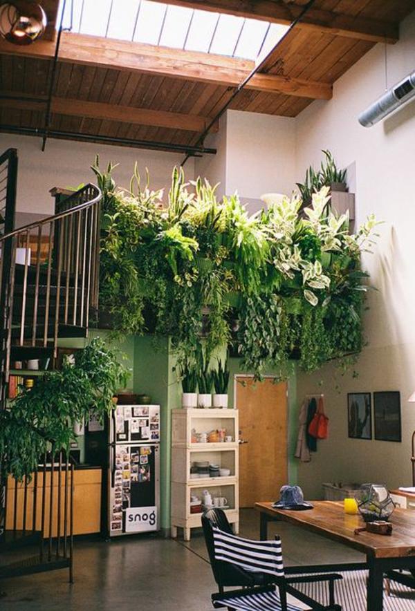deckenfenster Zimmerpflanzen groß bilder topfpflanzen üppig