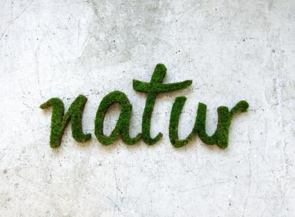 außenwand deko projekt natur graffiti erstellen graffiti aus moos künstlerin anna garforth