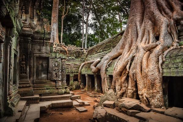 erde und mensch naturbilder kambodscha angkor