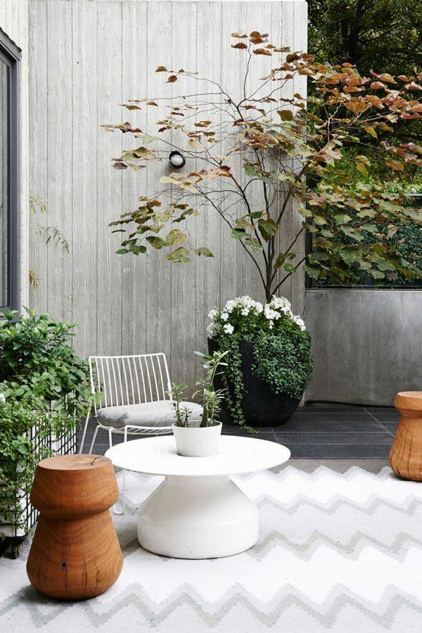 gartenideen im herbst bringen sie ihre topfpflanzen nach drinnen. Black Bedroom Furniture Sets. Home Design Ideas