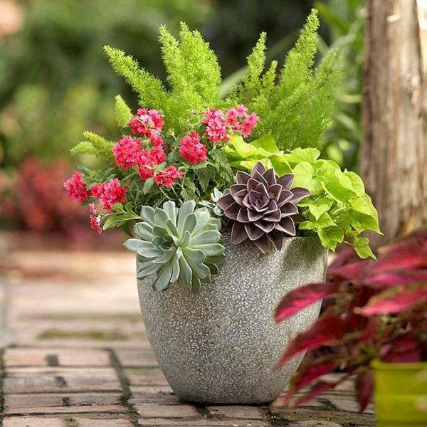Gartenideen im herbst bringen sie ihre topfpflanzen nach - Container garten ...