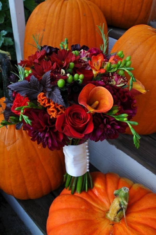 herbstblumen pflanzen herbst garten kürbisse halloween dekoration