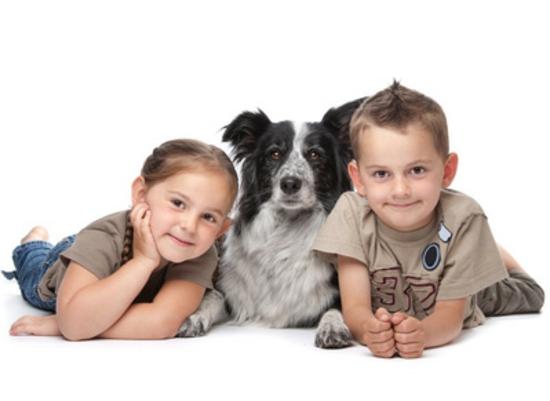 kindersicher machen kinderzimmereinrichtung haustiere kindersicherung hund-Two kids and a dog © biglama - Fotolia.com