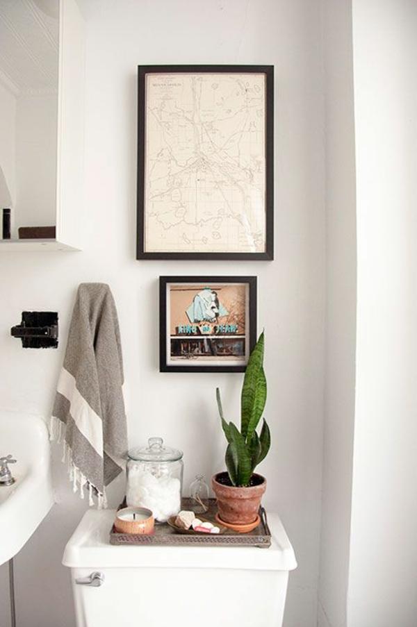 Zimmerpflanzen bilder gem tliche deko ideen mit topfpflanzen for Zimmerpflanzen ideen